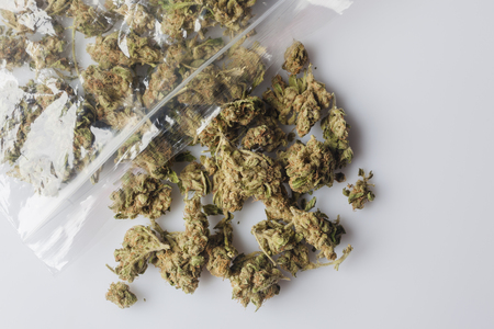 scattered on white background: Pile of medical cannabis dried buds scattered from nylon package on white background from above Stock Photo
