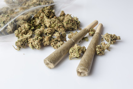 scattered on white background: Pile of medical cannabis dried buds scattered from nylon package and two marijuana joints on white background from side
