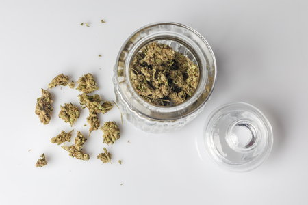 scattered on white background: Medical cannabis buds in an open glass jar with marijuana flowers scattered aside and transparent lid on white background directly from above