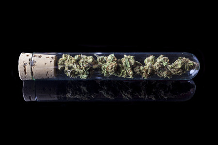 relaxant: Medical cannabis buds in glass test tube closed with cork on black background from side with reflection