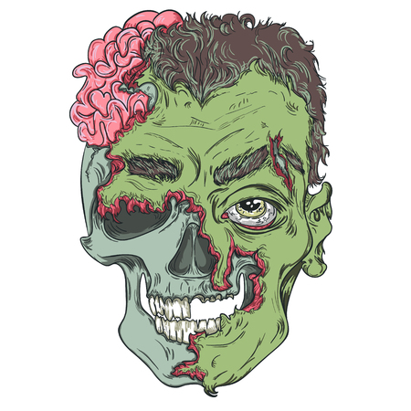 cannibal: Zombie head. Vector illustration with simple gradients. Detailed Zombie Head Illustration. The skull and the skin.