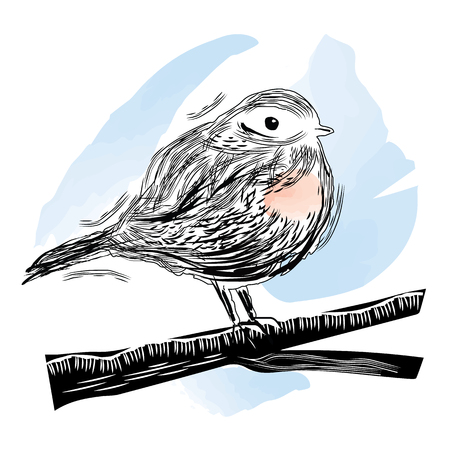 robin bird: Vector illustration of robin bird sitting on the branch in linocut and watercolor style