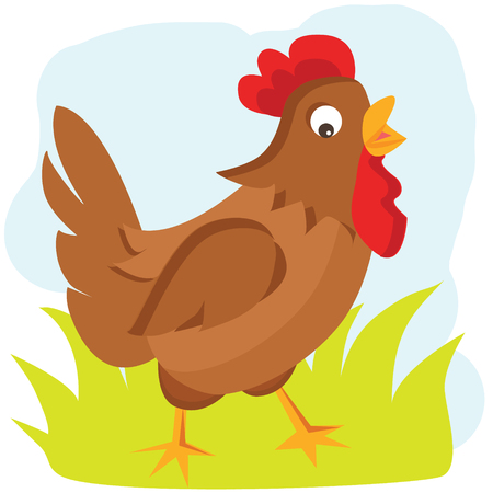 vector illustration  hen: Hen vector illustration. Hen on the green grass Illustration