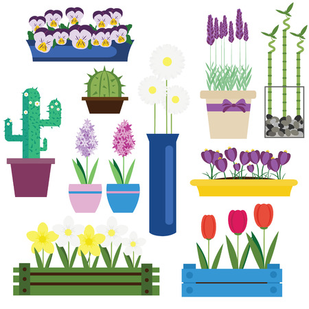 jonquil: Indoor and garden flowers in pots vector set. Home and seasonal  flowers vector illustration. Icons, design elements, labels Illustration