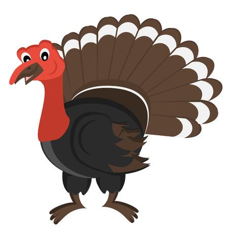 gobbler: Cartoon gobbler. Vector Illustration. Isolated turkey on white background
