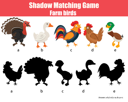 developmental: Shadow matching children educational game. Find the right shadow task for kids. Find the correct shadow for farm birds Illustration
