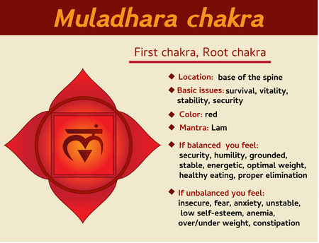 Muladhara chakra infographic. First, root chakra symbol description and features. Information for learning kundalini yoga