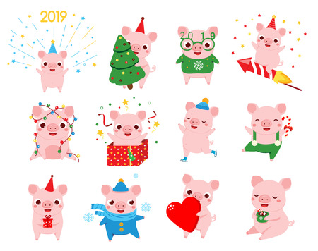 Cartoon pig, symbol of chinese 2019 new year in different poses. Big set of pig characters for seasonal greetings and message