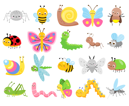 Cute insects. Big set of cartoon insects for kids and children. Butterflies, snail, spider, moth and many other funny bugs creatures Illustration