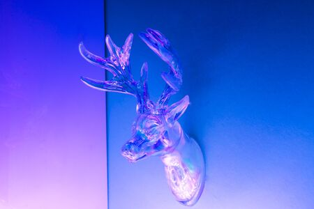 Deer head on wall. Neon holographic colors pink and blue. Concept photo for winter holidays, Christmas, New year Stock Photo