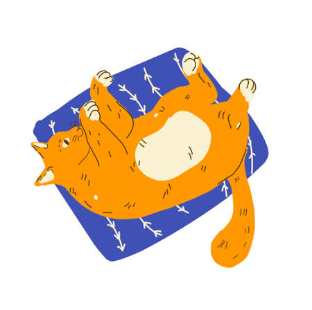 Funny cartoon ginger cats lazy relax. Modern flat style pet vector illustration