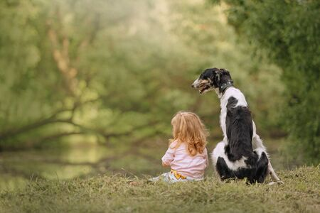 small girl and borzoi dog sitting outdoors in summer, rear view