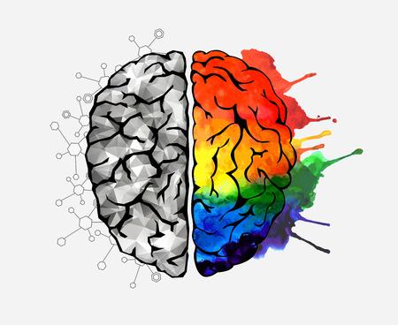 Konzept des menschlichen Gehirns