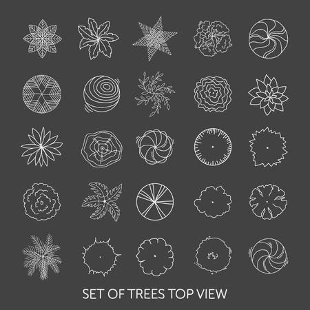 나무의 집합입니다. 평면도