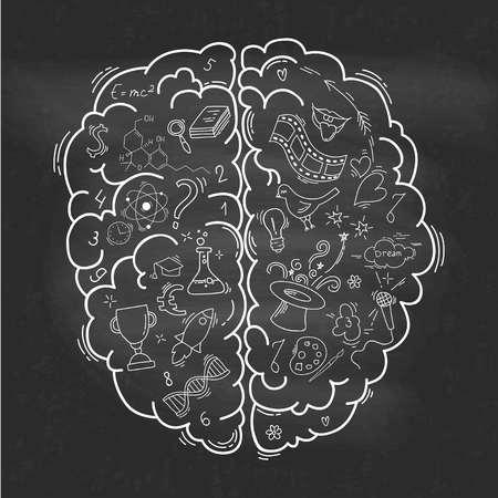 인간 두뇌의 개념 일러스트