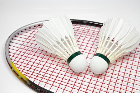 shuttlecock: shuttlecock and racket for play badminton