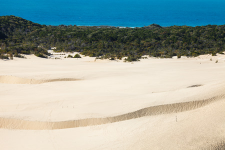 fraser: Sandblow in fraser island Austaralia Stock Photo