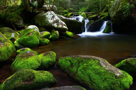Stream on the roaring fork motor trail near Gatlinburg Tennessee in the smoky mountain national park