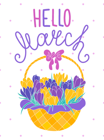 croci: Hello march, cheerful spring greeting card with hand-written text and violet and yellow crocus flowers bouquet in a basket with a bow. Early spring flowers composition on white dotted background. Illustration