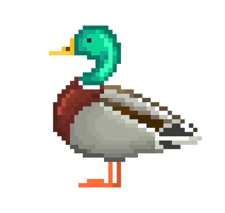 Pixel art drake isolated on white background. Waterfowl male duck standing on the ground. Illustration