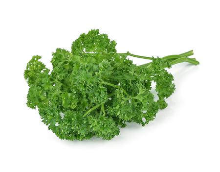 parsley isolated on white background Stok Fotoğraf