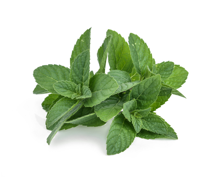 Peppermint in closeup (mint, peppermint, leaves)