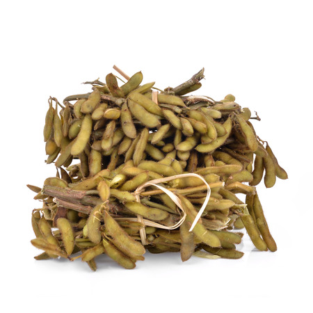Green soybean, the pigeon pea or genus Cajanus. 免版税图像