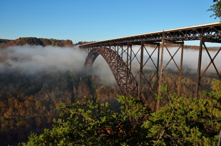 west virginia trees: The bridge over the clouds