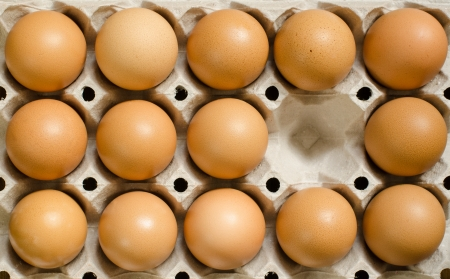 Brown eggs in a carton with an empty cell photo