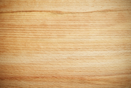 wood paneling: Beech wood texture for background