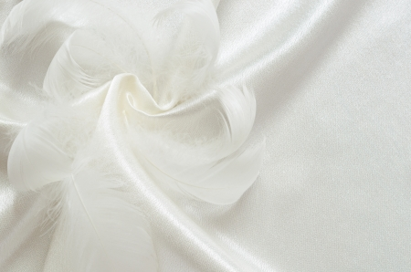 White silk and swan feathers for background photo