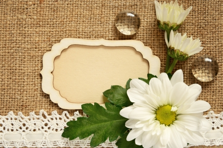 Canvas background with card and daisy arrangement