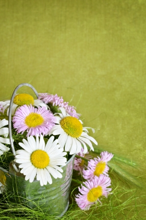 Bouquet of daisies in a metal bucket on green background photo