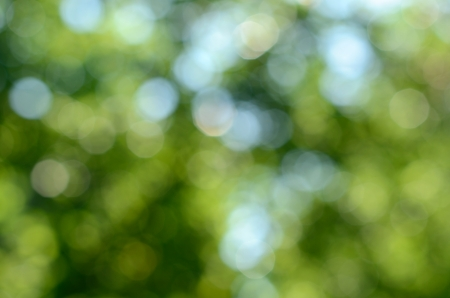 Green and blue summer bokeh for background