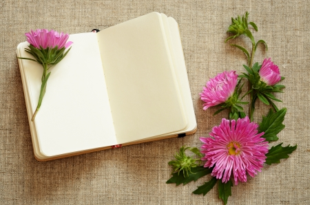 composition notebook: Notebook and asters composition in a corner on canvas background