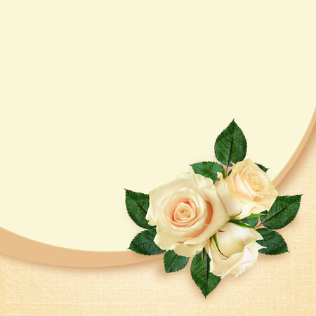 Rose flowers composition on beige background Stock Photo