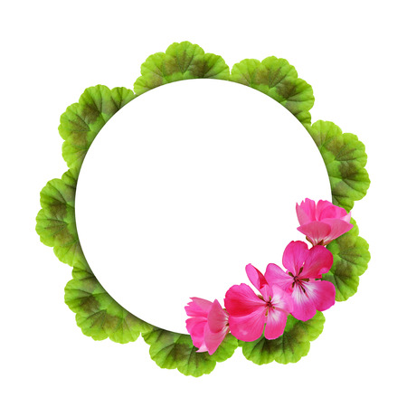 Background with geranium flowers and round frame photo