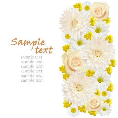 Flowers edge isolated on white photo