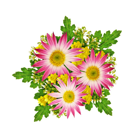 rotund: Asters and wild flowers bouquet isolated on white