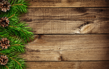 edges: Wooden background with pine tree branche edges