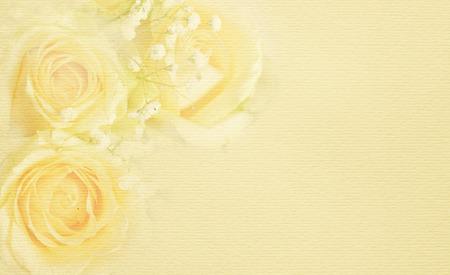 White rose des fleurs dans un coin, sur un fond beige Banque d'images - 52891703