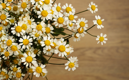 p�querette: Petites fleurs de marguerite sur fond de bois
