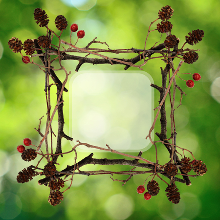 shrunken: Frame made from dry twigs on green soft background