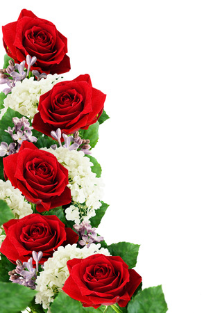 beautiful rose: Red roses, hydrangea and lilac flowers isolated on white Stock Photo