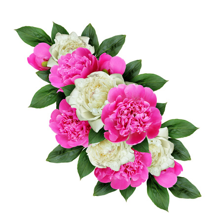 Pink and white peonies flowers arrangement isolated on white stock pink and white peonies flowers arrangement isolated on white stock photo 65316177 mightylinksfo