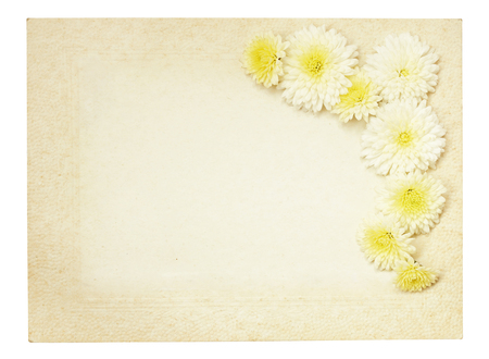 rotund: Old vintage paper frame with white aster flowers isolated on white