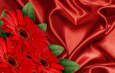 Red satin fabric draped in the form of heart and red gerbera flowers for Valentines day background