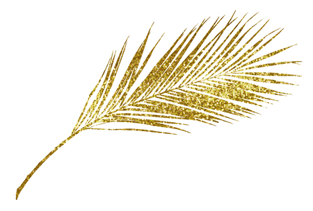 Closeup of golden glitter palm branch isolated on white