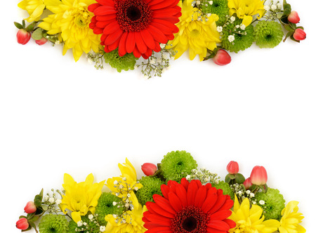 edges: Yellow, red and green flowers arrangements on white background. Flat lay. Top view.