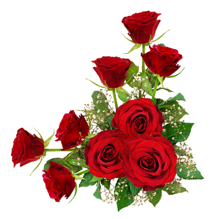 Red roses and gypsophila flowers with leaves in a corner arrangement isolated on white. Top view.